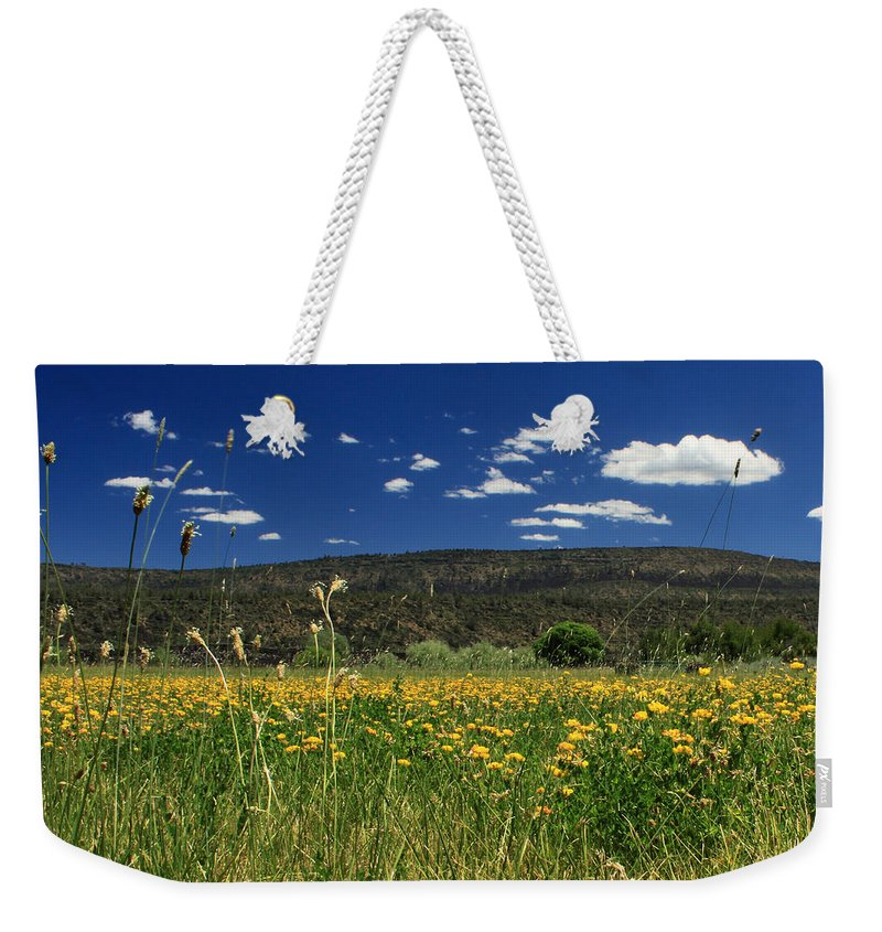 Landscape Weekender Tote Bag featuring the photograph Springtime In Hat Creek by James Eddy