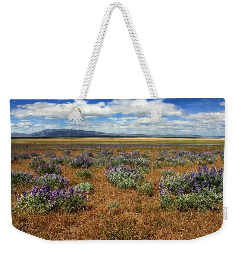 Landscape Weekender Tote Bag featuring the photograph Springtime In Honey Lake Valley by James Eddy