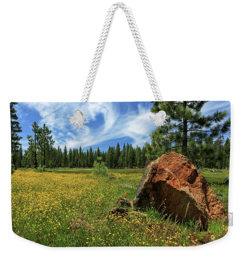 Landscape Weekender Tote Bag featuring the photograph Springtime In Lassen County by James Eddy