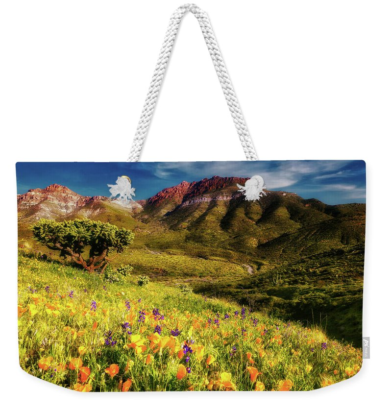 Adventure Weekender Tote Bag featuring the photograph Springtime In The Desert Southwest by Rick Furmanek