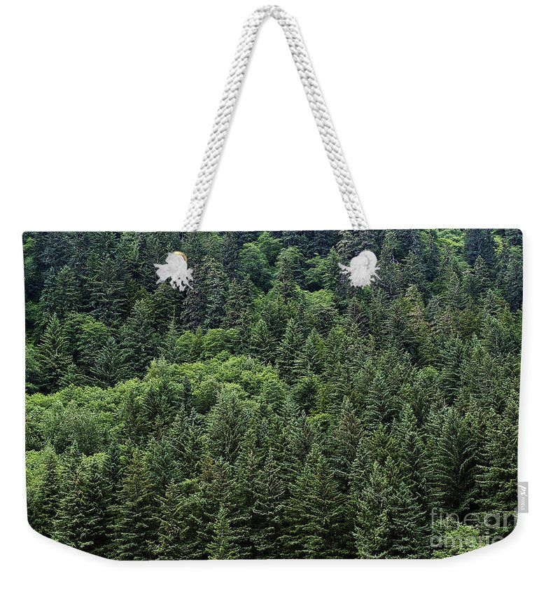 Alaska Weekender Tote Bag featuring the photograph Spruce Forest by John Greim