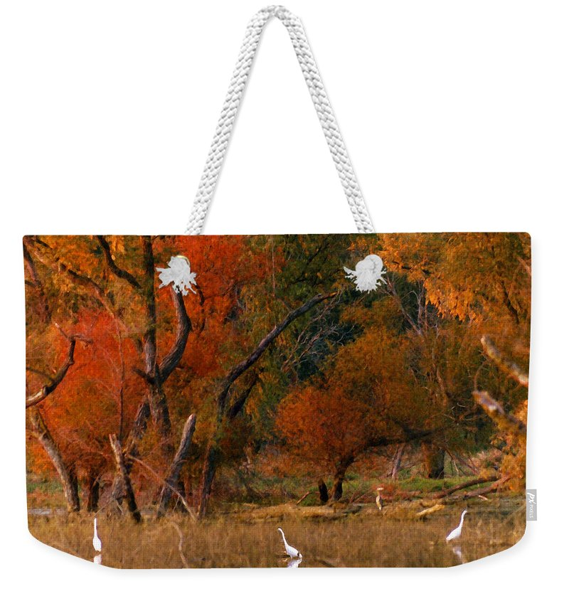 Landscape Weekender Tote Bag featuring the photograph Squaw Creek Egrets by Steve Karol