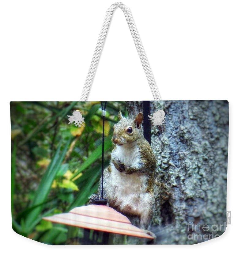 Squirrel With Attitude Weekender Tote Bag featuring the photograph Squirrel Portrait by John Myers