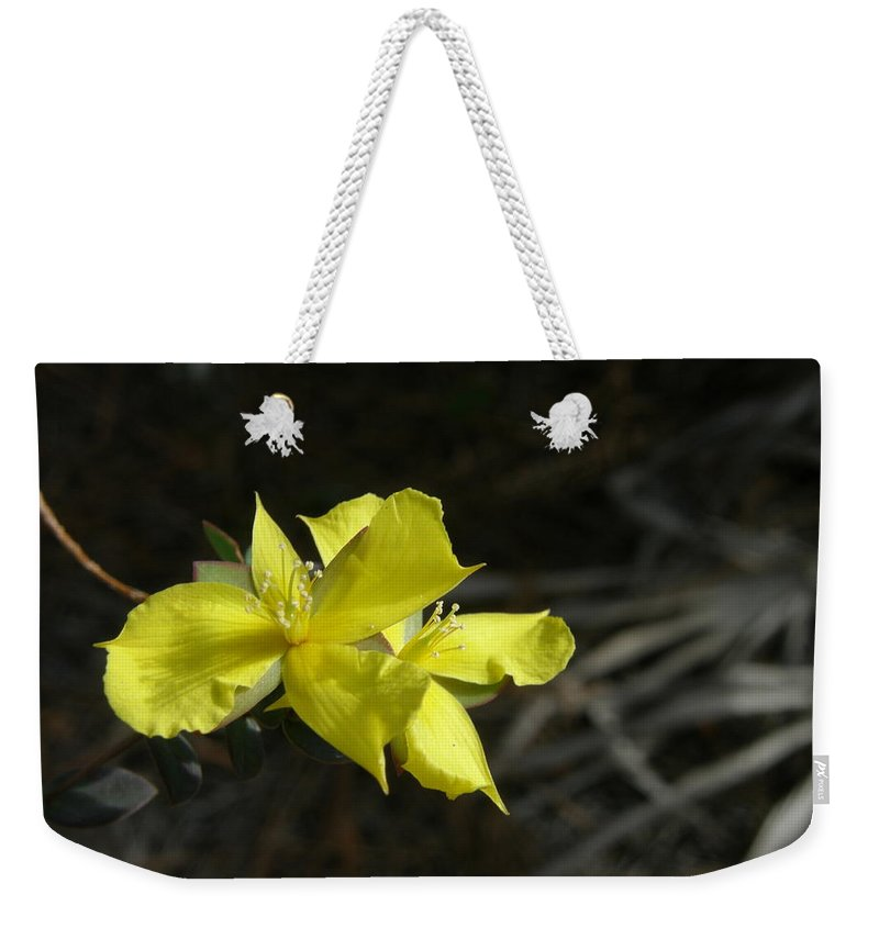 Flower Weekender Tote Bag featuring the photograph St. John by Kimberly Mohlenhoff