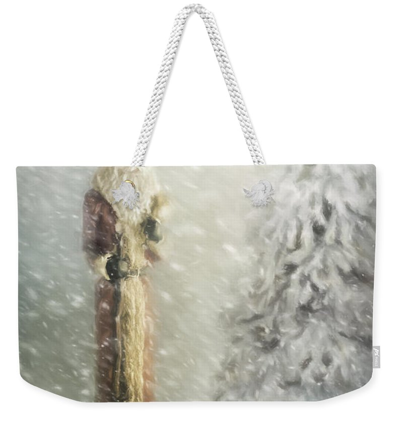 Father Christmas Weekender Tote Bag featuring the photograph St Nicholas In The Snow by Ann Garrett