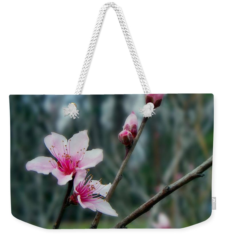 Peach Weekender Tote Bag featuring the photograph Stages Of Spring by Betty Northcutt