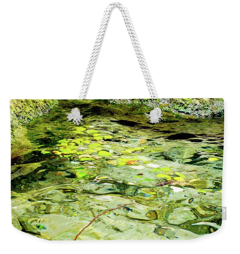 Tim Dussault Weekender Tote Bag featuring the photograph Stagnate by Tim Dussault