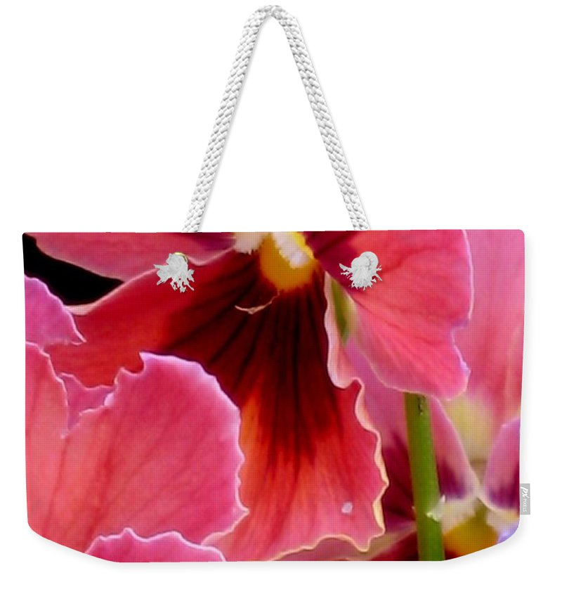 Floral Weekender Tote Bag featuring the photograph Stained Glass by Marla McFall
