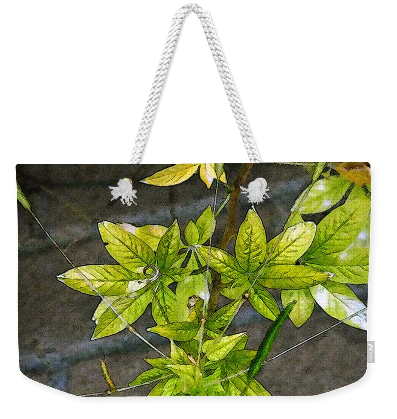 Autumn Weekender Tote Bag featuring the painting Stalk With Seed Pods by RC DeWinter