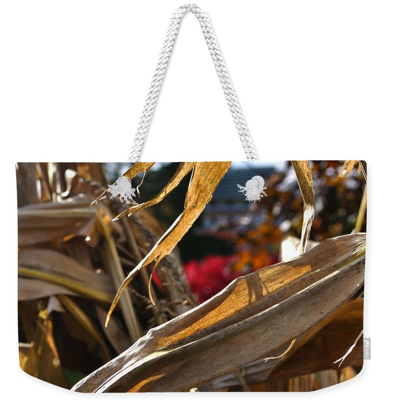 Corn Stalk Weekender Tote Bag featuring the photograph Stalks by Tim Nyberg