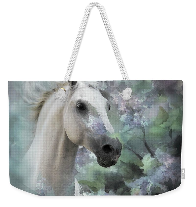 Stallion Weekender Tote Bag featuring the mixed media Stallion Beauty by G Berry