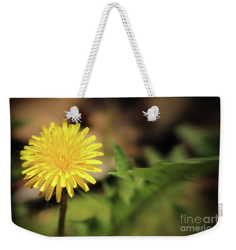 Dandelion Weekender Tote Bag featuring the photograph Stand Out - Dandelion by Douglas Milligan