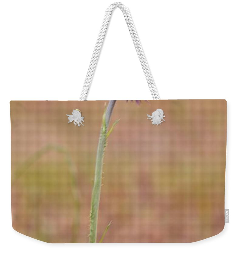 Stand Tall Weekender Tote Bag featuring the photograph Stand Tall by Maria Urso