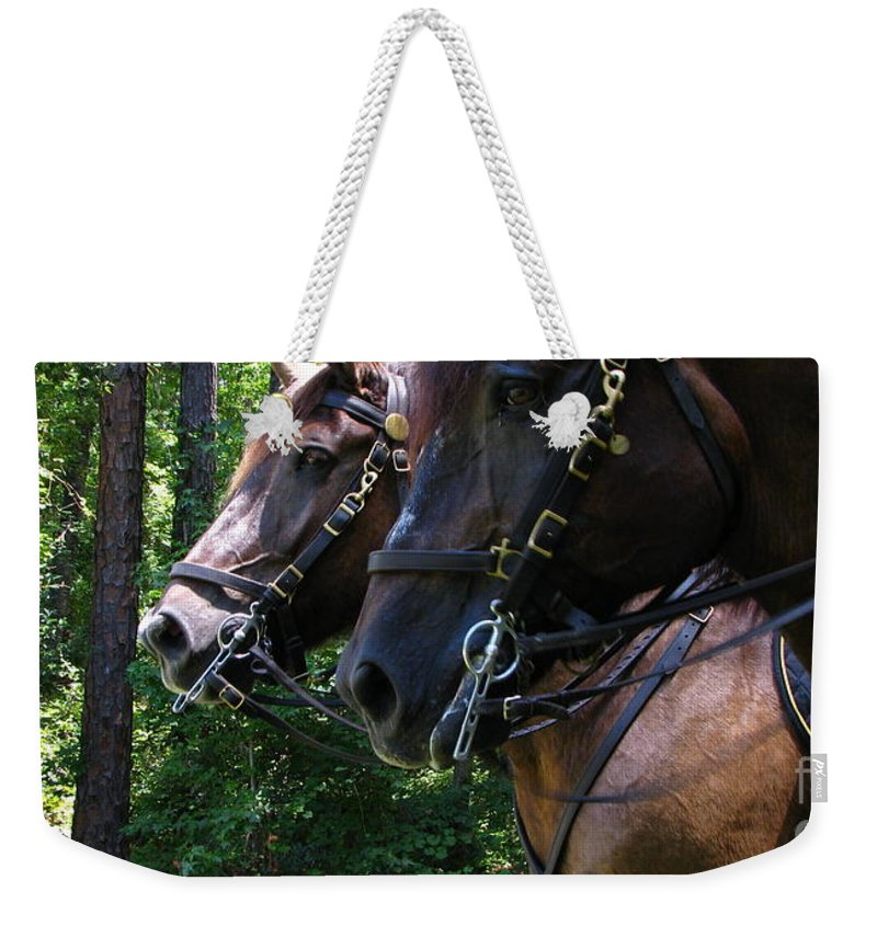 Patzer Weekender Tote Bag featuring the photograph Standing Around by Greg Patzer