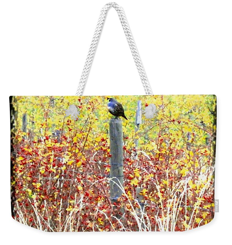 Quail Weekender Tote Bag featuring the digital art Standing Guard by Will Borden