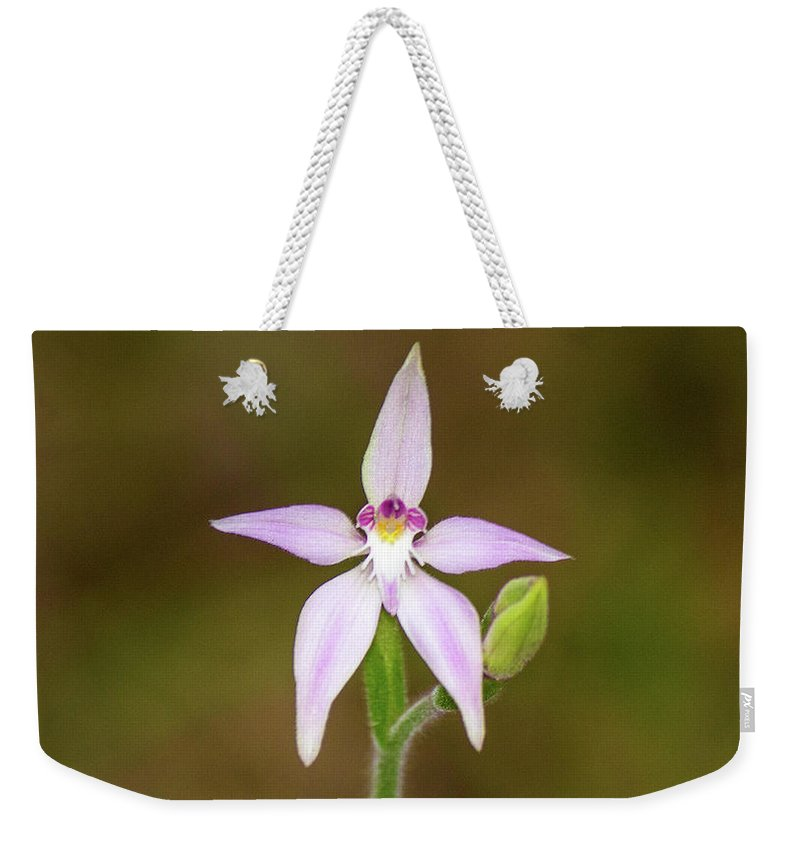 Flower Weekender Tote Bag featuring the photograph Star Flower by Tania Read