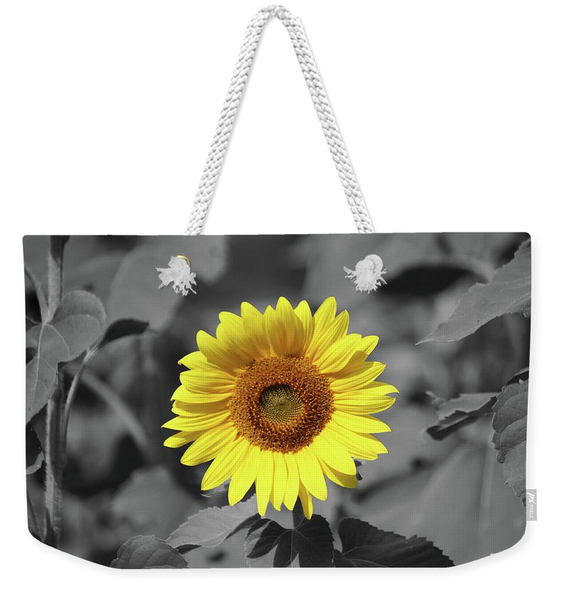 Jarrettsville Weekender Tote Bag featuring the photograph Star Of The Show - Standing Out by Ronald Reid