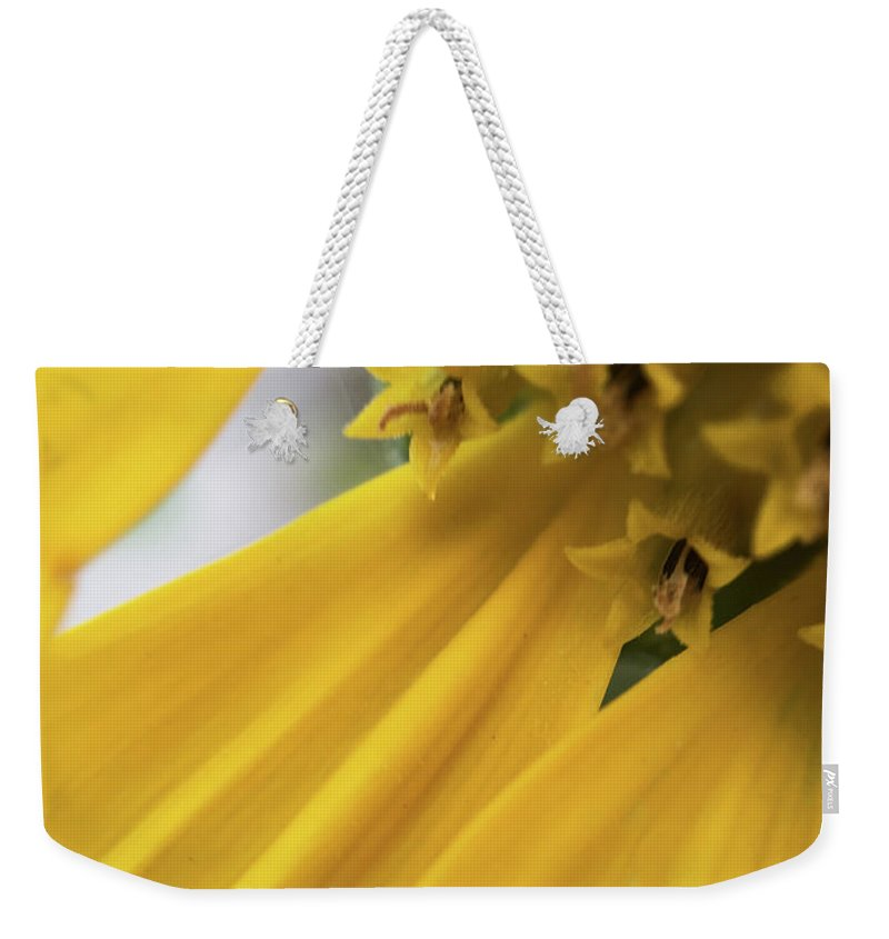 Flower Art Weekender Tote Bag featuring the photograph Star Tails by Gary Andre