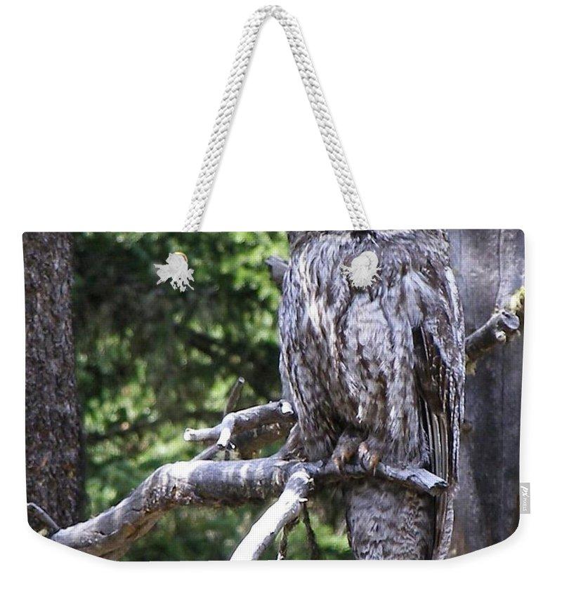 Bird Weekender Tote Bag featuring the photograph Stare Down by DeeLon Merritt