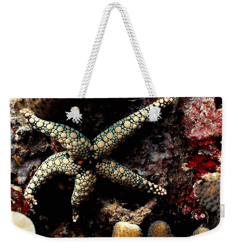 Starfish Weekender Tote Bag featuring the photograph Starfish by Dragica Micki Fortuna