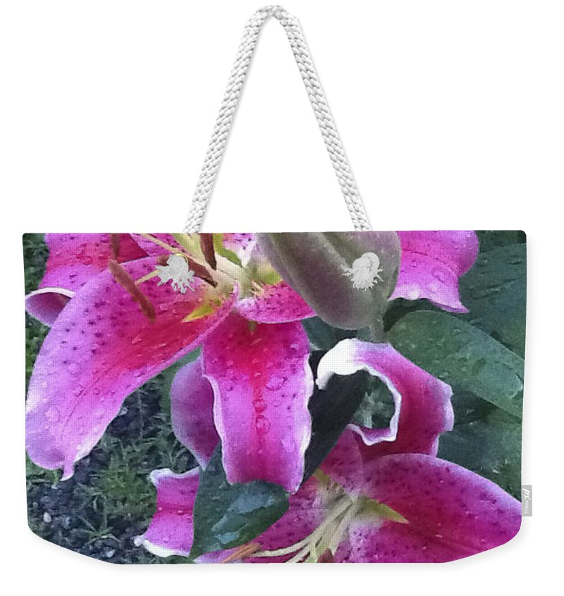 Living Room Weekender Tote Bag featuring the photograph Stargazer Lilies II by Johnnie Stanfield