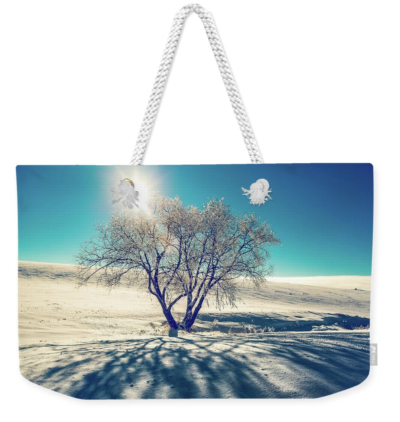 Tree Weekender Tote Bag featuring the photograph Stark Shadows by Marcia Darby