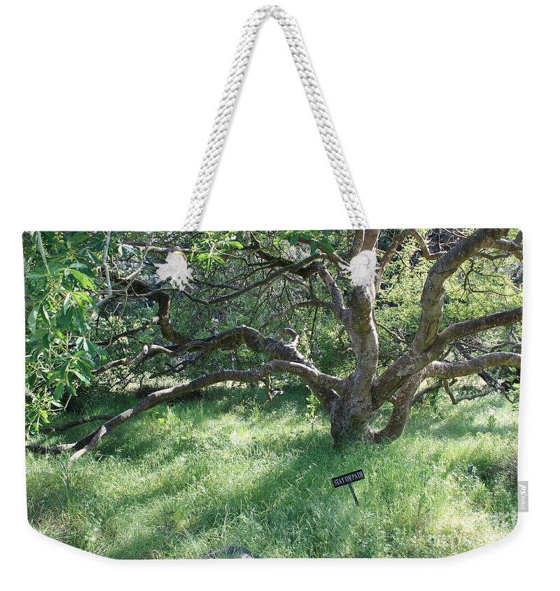 Tree Weekender Tote Bag featuring the photograph Stay On Path by Carol Groenen
