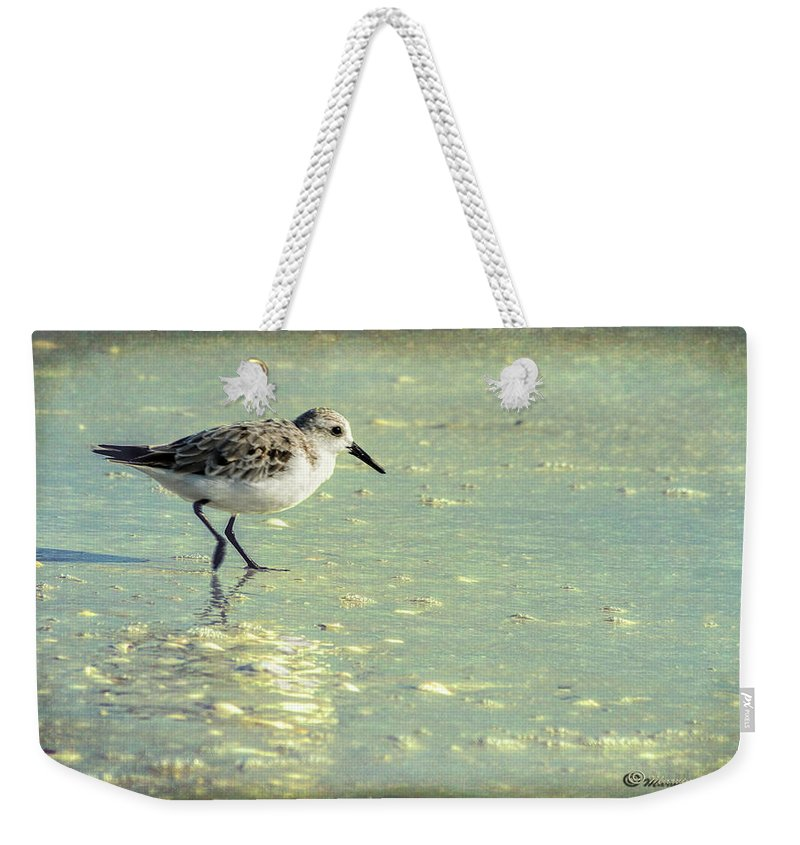 Birds Weekender Tote Bag featuring the photograph Staying Focused by Marvin Spates