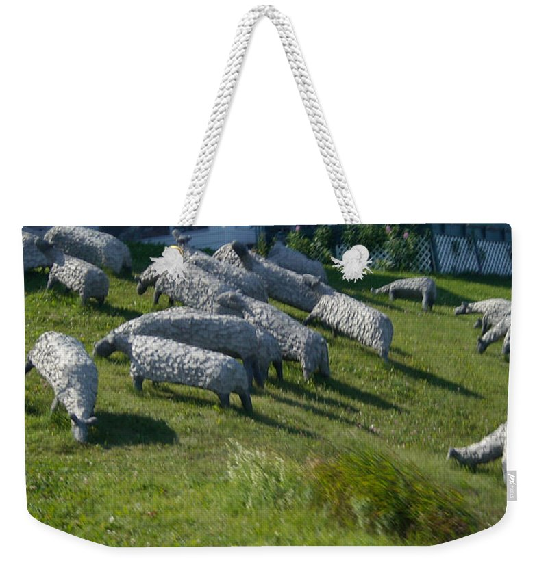 Sheep Weekender Tote Bag featuring the photograph Ste Flavie 002 by Line Gagne