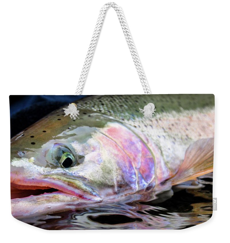 Fishing Weekender Tote Bag featuring the photograph Steelhead 3 by Jason Brooks