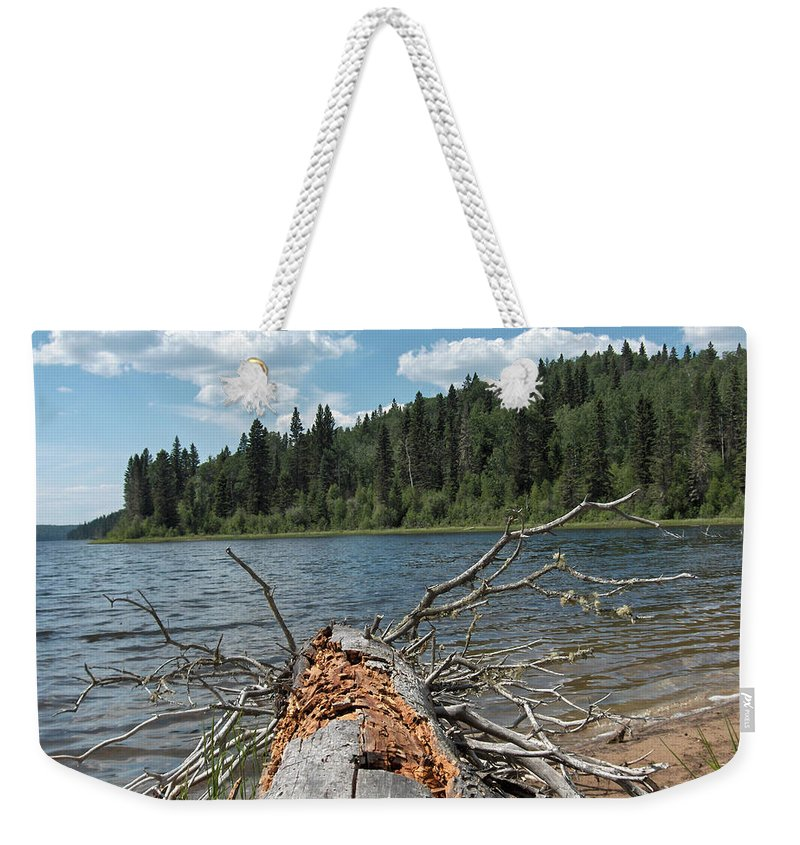 Water Lake Scenery Trees Wood Forest Driftwood Branches Shore Beach Weekender Tote Bag featuring the photograph Steepbanks Lake The Fallen by Andrea Lawrence
