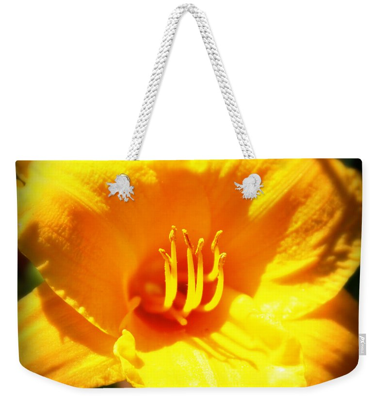Flower Weekender Tote Bag featuring the photograph Stella by Tina Meador
