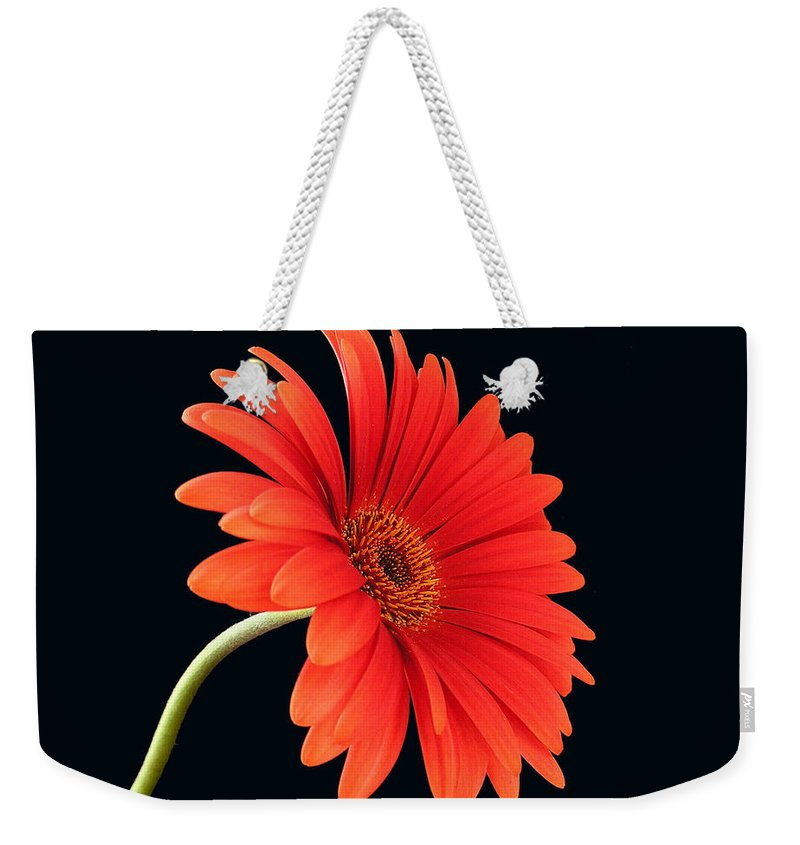 Flower Weekender Tote Bag featuring the photograph Stemming Beauty by Carol Milisen