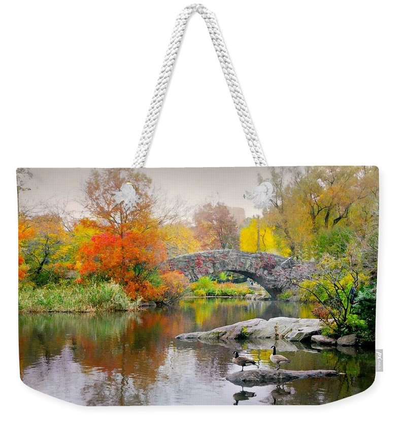 Landscape Weekender Tote Bag featuring the photograph Stepping Stones by Diana Angstadt