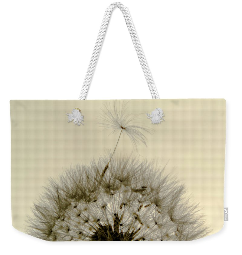Dandelion Weekender Tote Bag featuring the photograph Sticking Out by Wolfgang Stocker