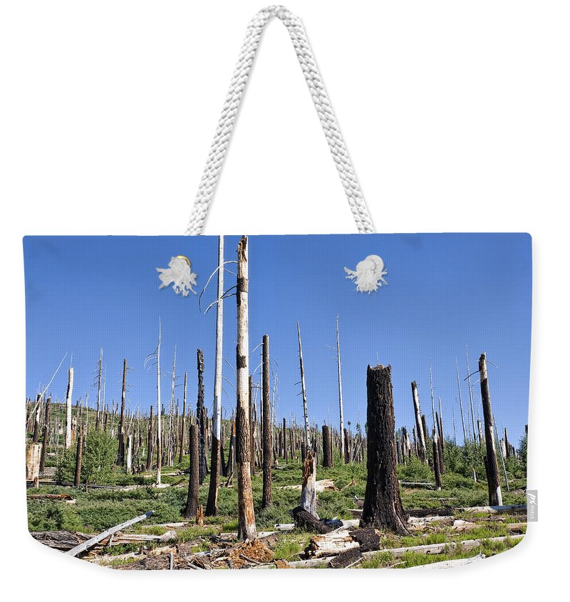 Dead Trees Weekender Tote Bag featuring the photograph Sticks by Kelley King