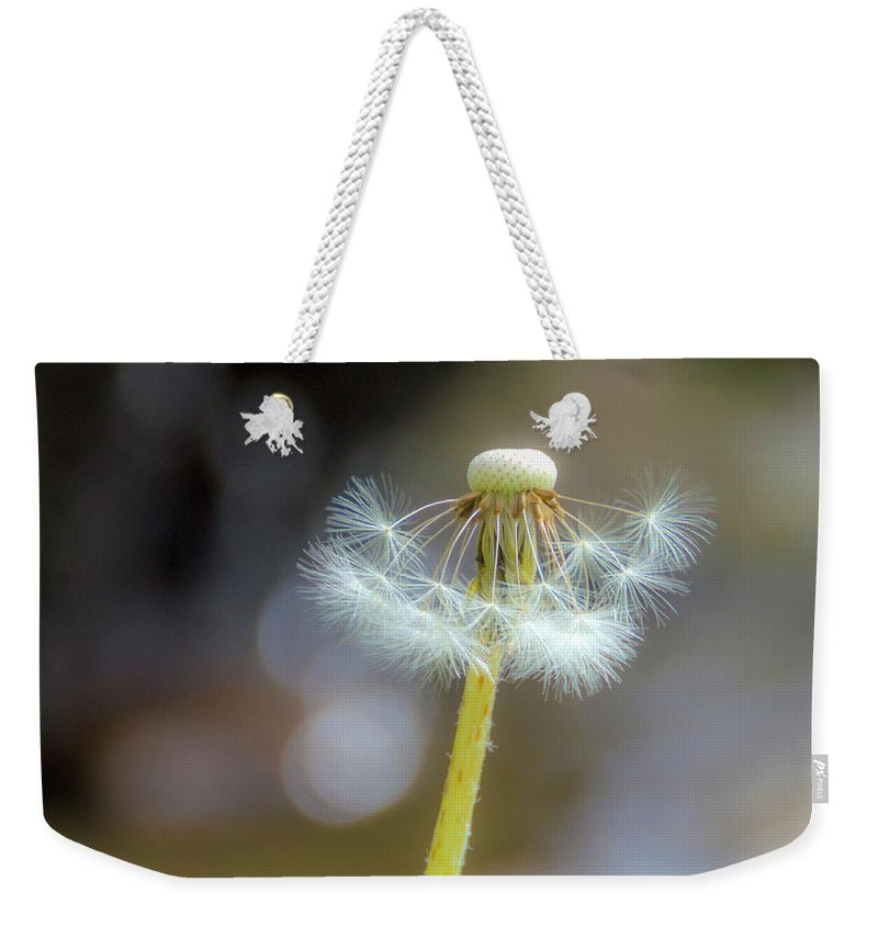 Dandelion Weekender Tote Bag featuring the photograph Still Standing Tall by Wolfgang Stocker