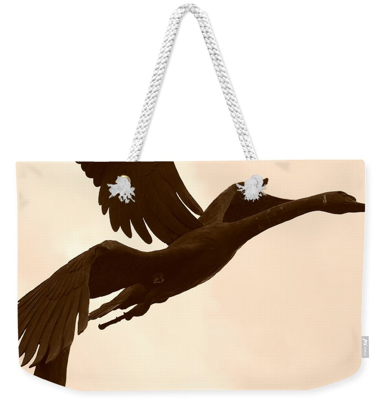 Sepia Weekender Tote Bag featuring the photograph Stone Birds by Rob Hans