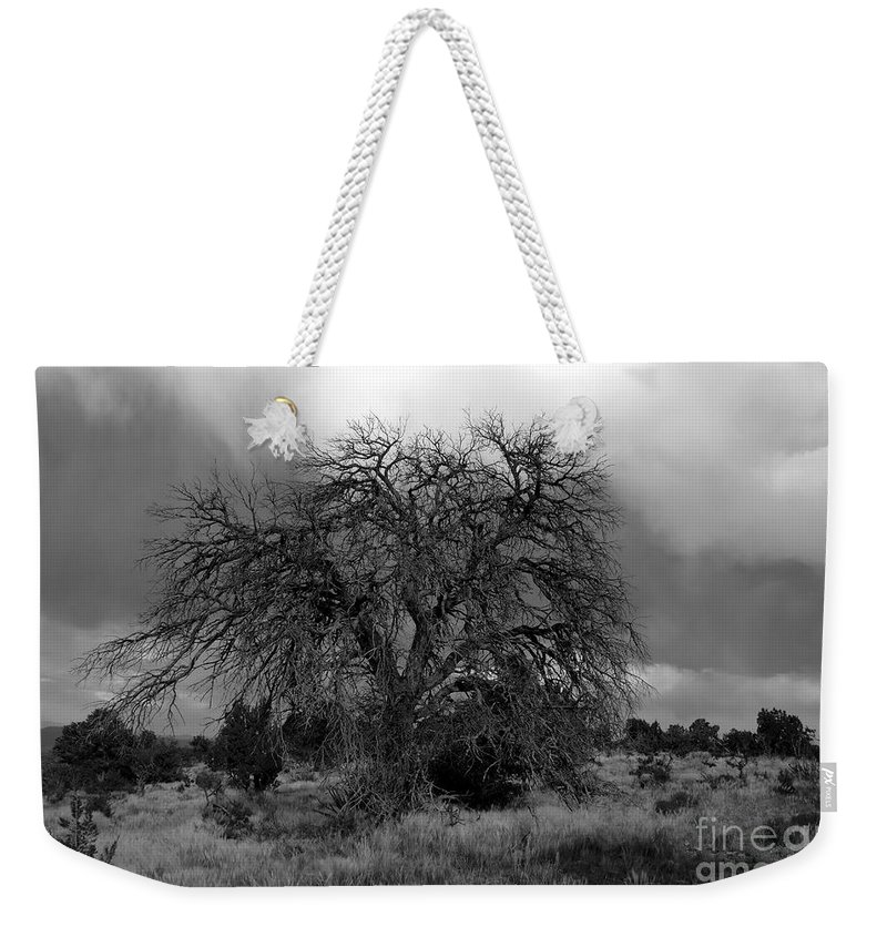 Storm Weekender Tote Bag featuring the photograph Storm Tree by David Lee Thompson
