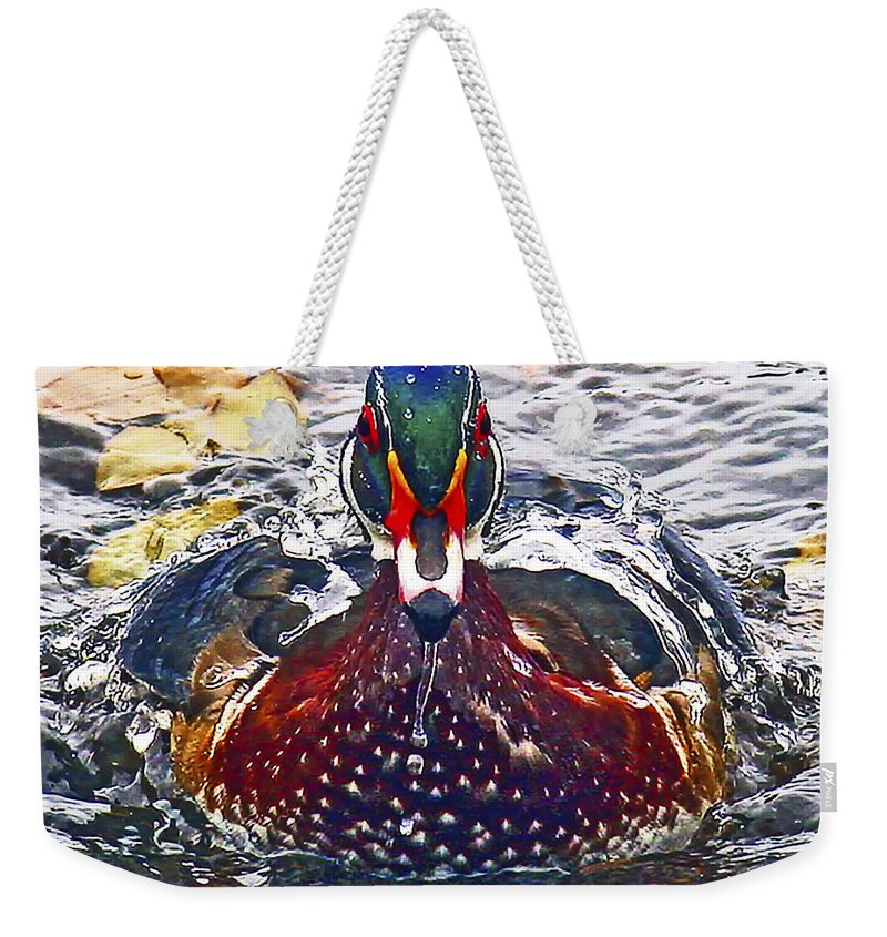 Jean Noren Weekender Tote Bag featuring the photograph Straight Ahead Wood Duck by Jean Noren