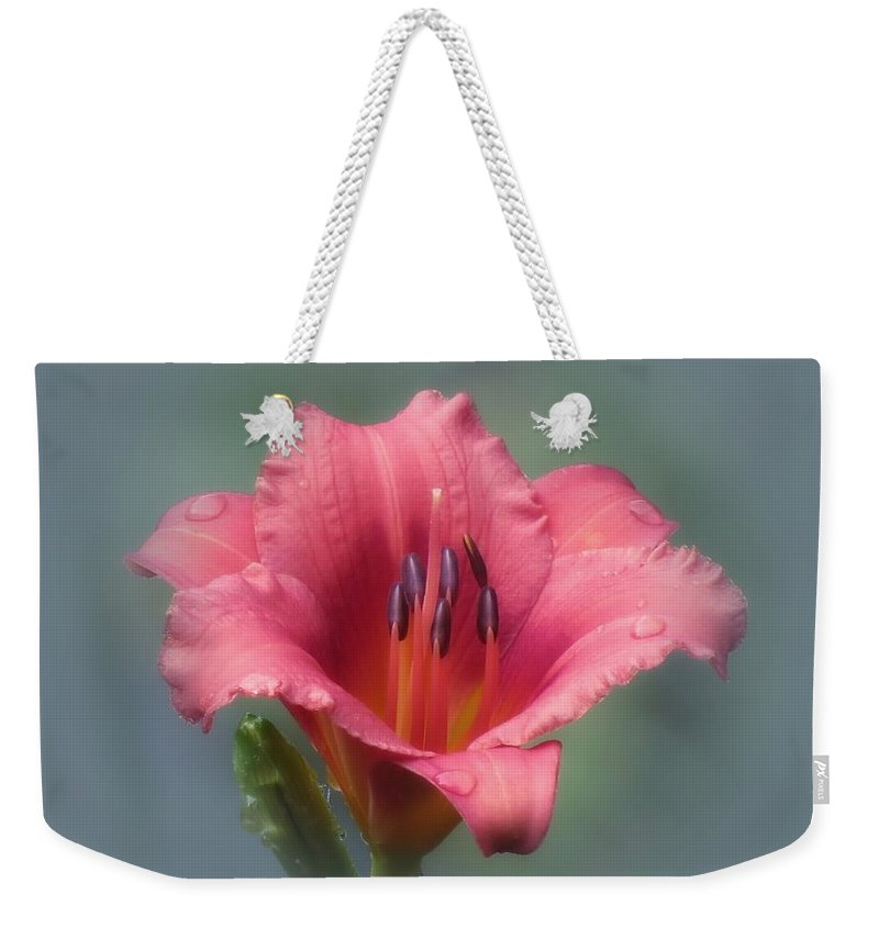 Daylily Weekender Tote Bag featuring the photograph Strawberry And Blue - Daylily by MTBobbins Photography