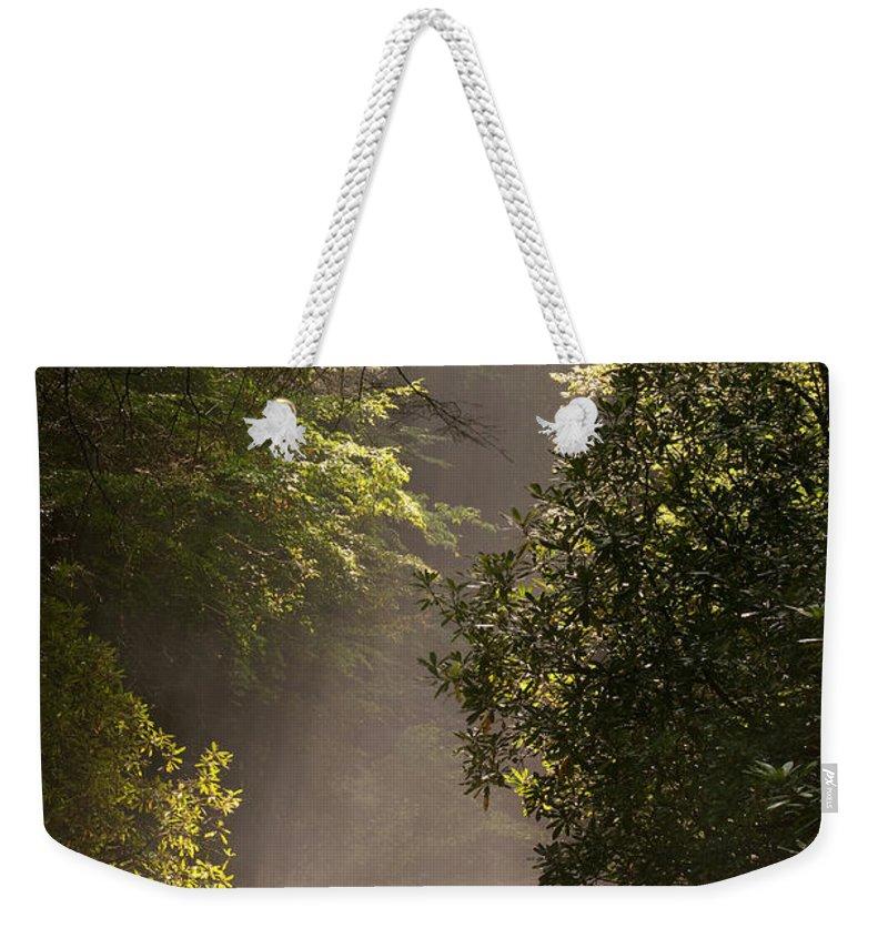 Blueridge Weekender Tote Bag featuring the photograph Stream Light by Steve Gadomski