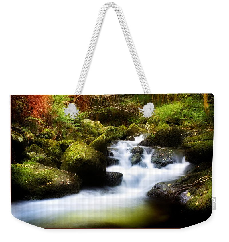 Stream Weekender Tote Bag featuring the photograph Stream Steps by Mal Bray