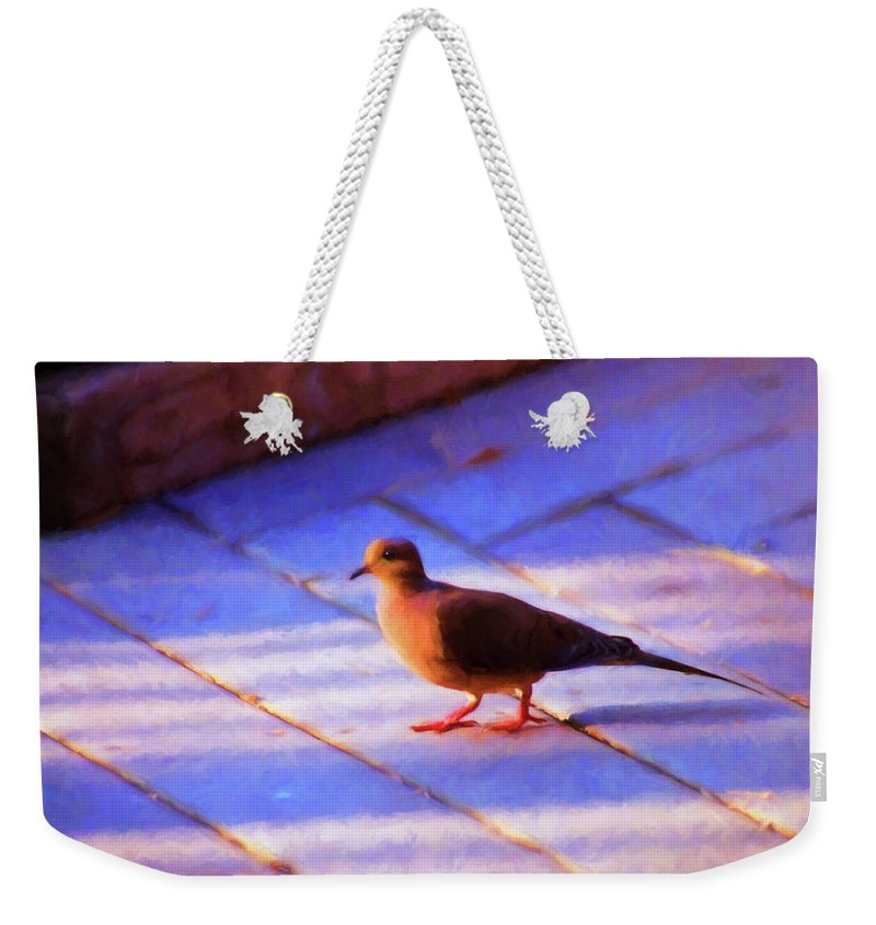 Birds Weekender Tote Bag featuring the photograph Street Dove by Jan Amiss Photography
