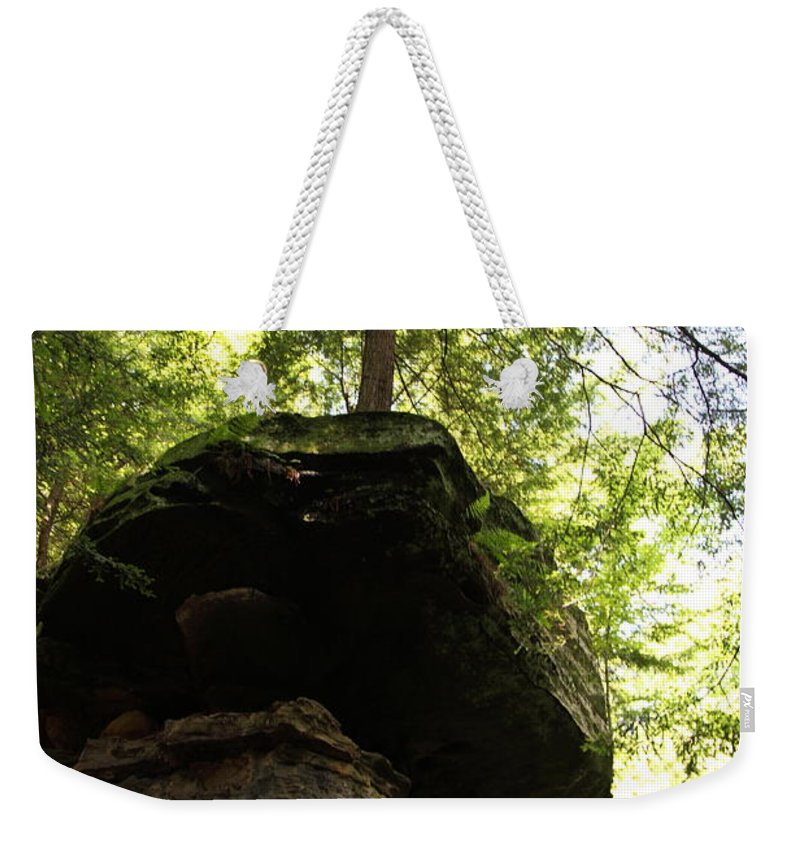 Tree Weekender Tote Bag featuring the photograph Strength by Amanda Barcon