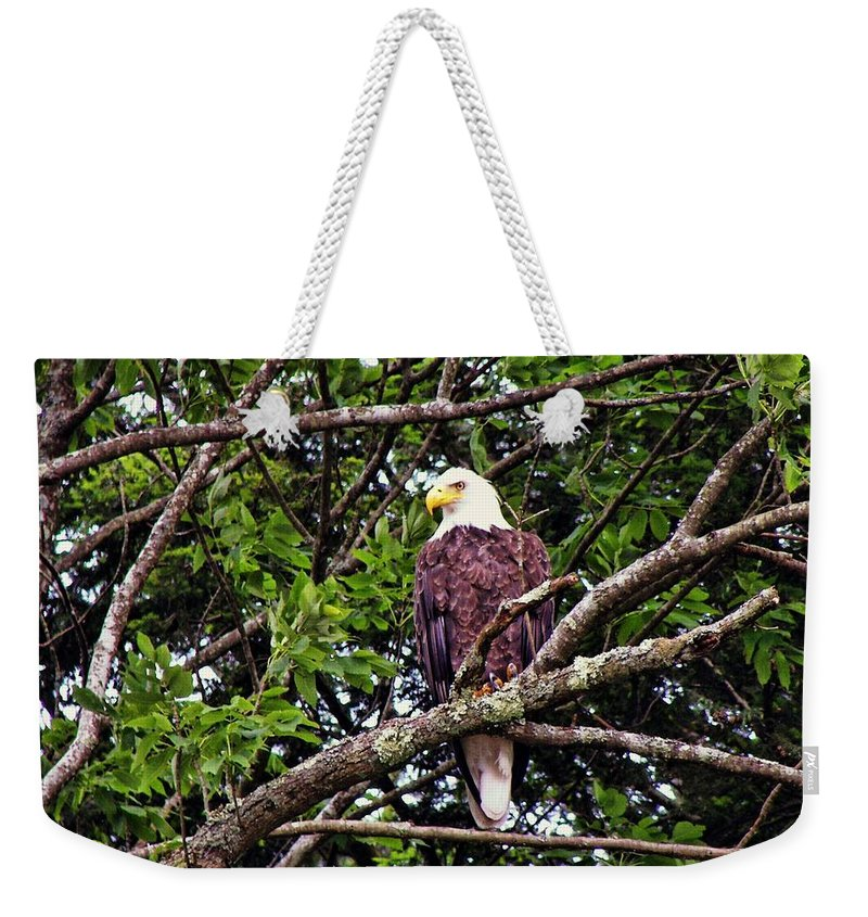Eagle Weekender Tote Bag featuring the photograph Strength by JAMART Photography