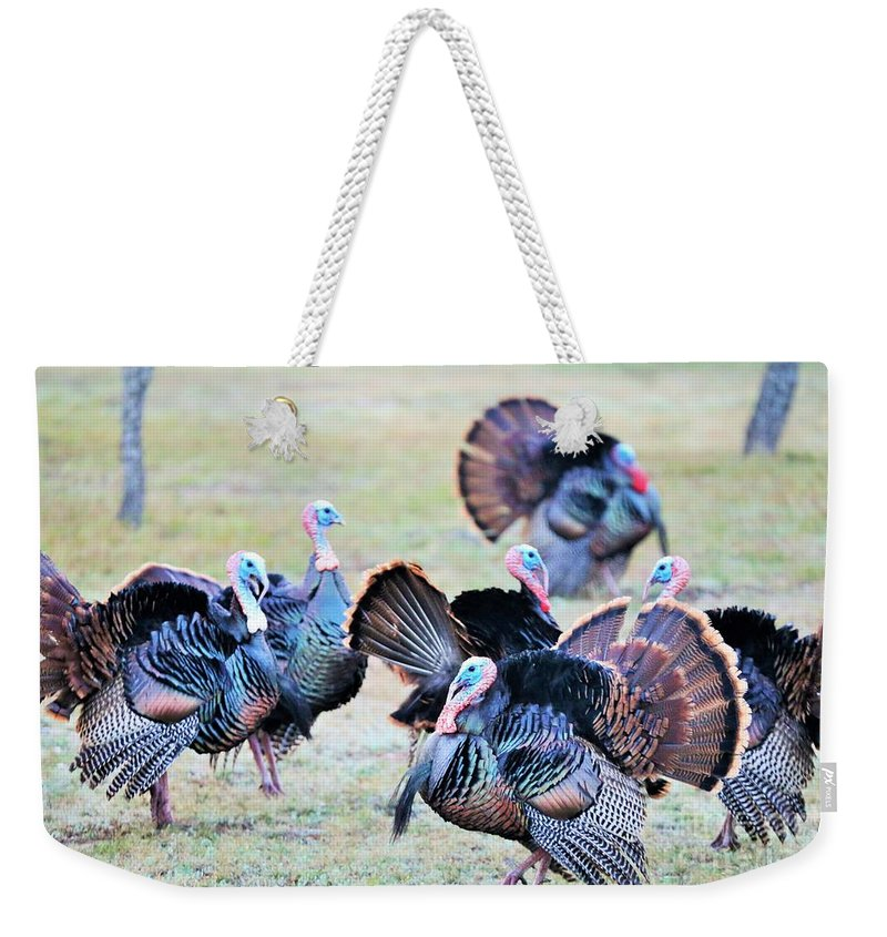 Turkey Weekender Tote Bag featuring the photograph Strike The Pose by Jeff Downs