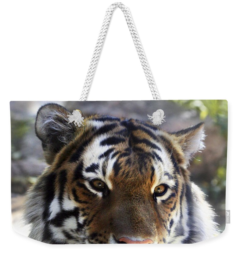 Animal Weekender Tote Bag featuring the photograph Striped Beauty by Marilyn Hunt