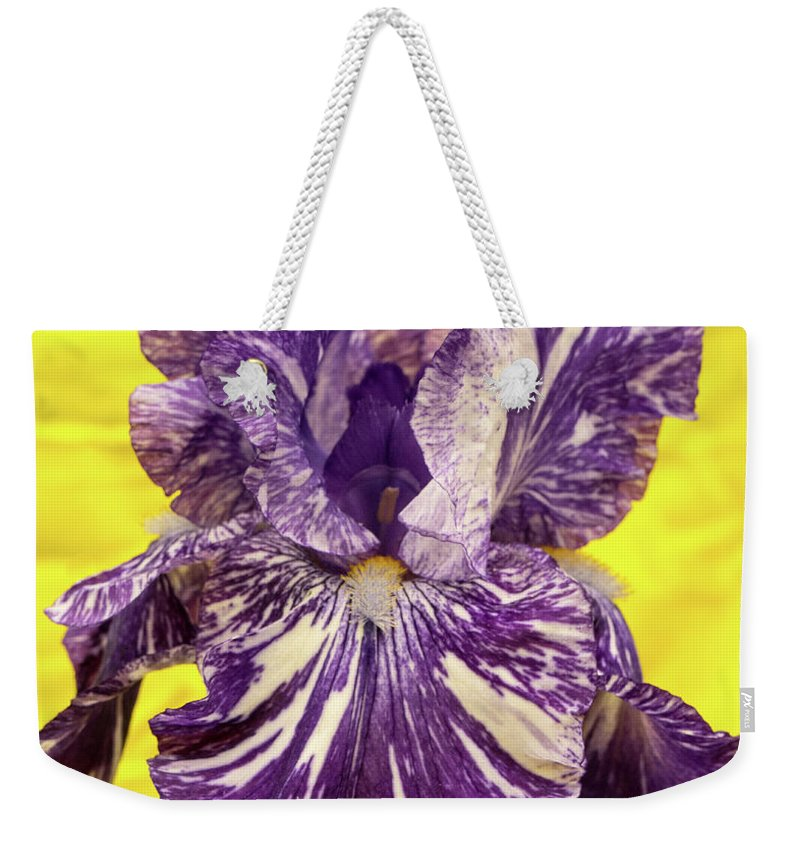 Stripped Weekender Tote Bag featuring the photograph Stripped Lady Iris by Douglas Barnett
