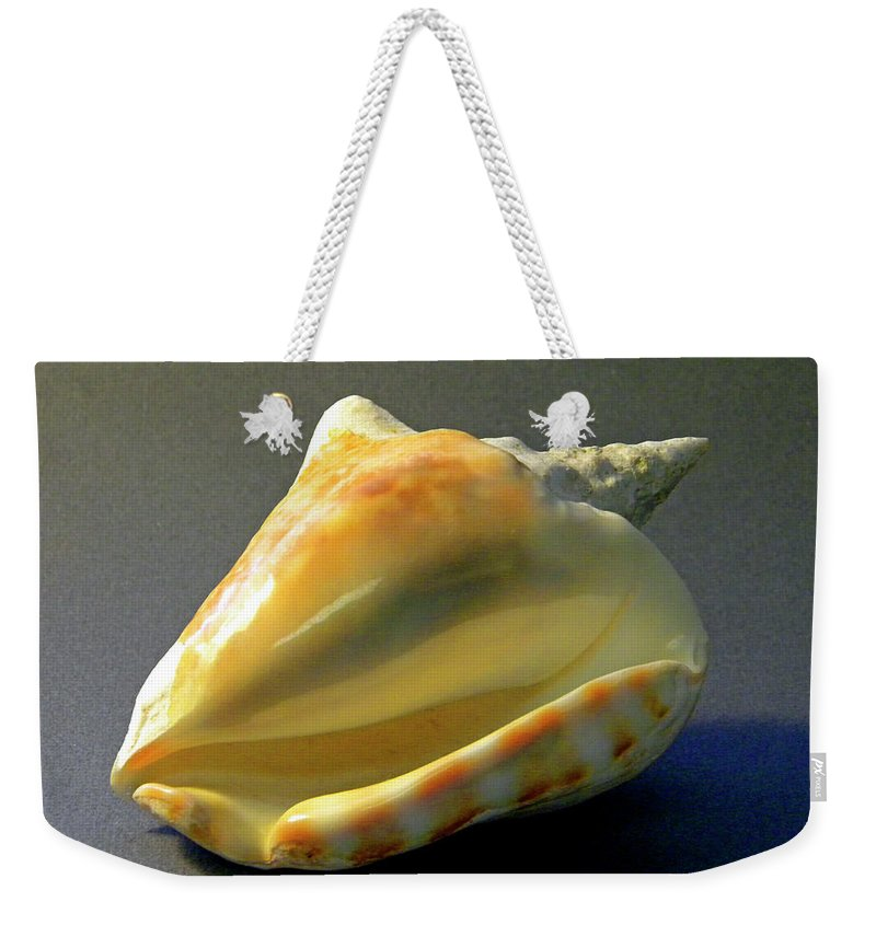 Frank Wilson Weekender Tote Bag featuring the photograph Strombus Inermis Seashell by Frank Wilson